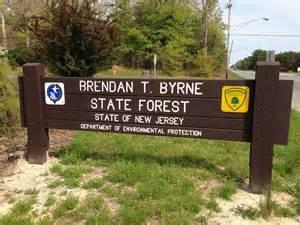 Brendan T Byrne State Forest