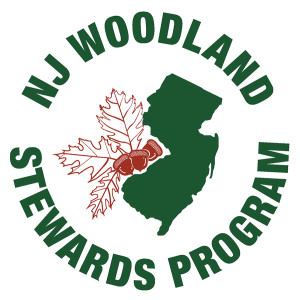 NJWS Logo Final